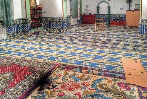 MoscheaRipa